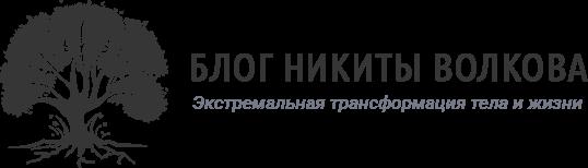 Логотип сайта Блог Никиты Волкова