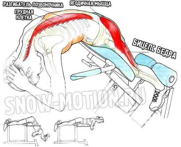 Гиперэкстензия мышцы