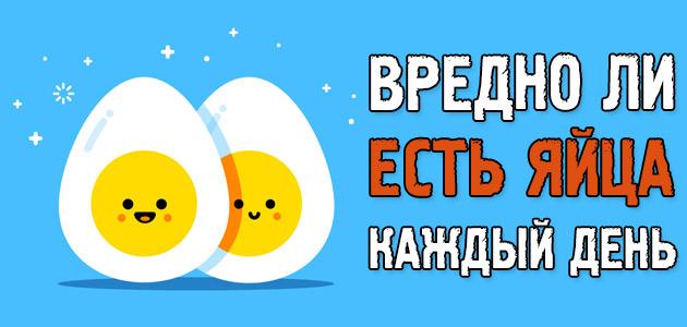 Вредно ли есть яйца каждый день