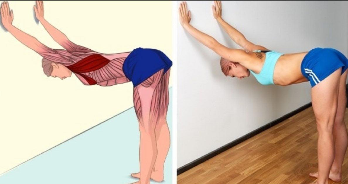 Растяжка мышц спины с опорой